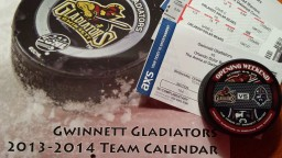 Gwinnett Gladiators 2013-14