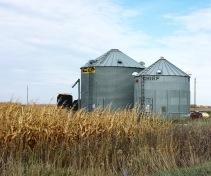Iowa Cornfields & Grainbins.